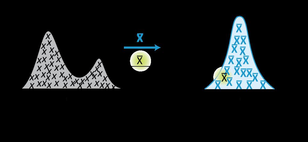 Understanding the Sampling Distribution - Creative Maths